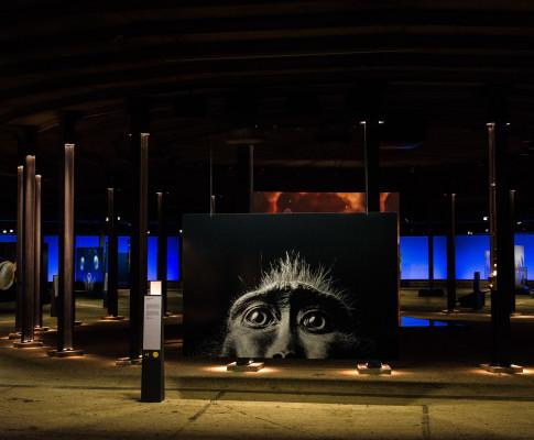 """Ausstellung """"Wunder der Natur"""" im Gasometer"""