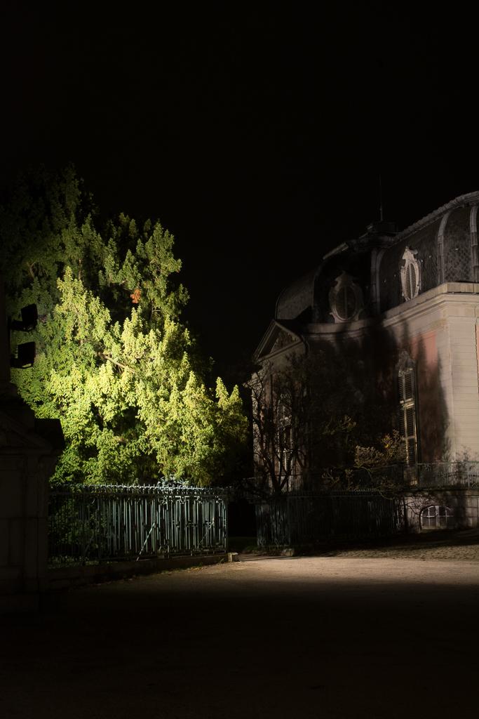 20141119_SchlossBenrath_DSC_3498