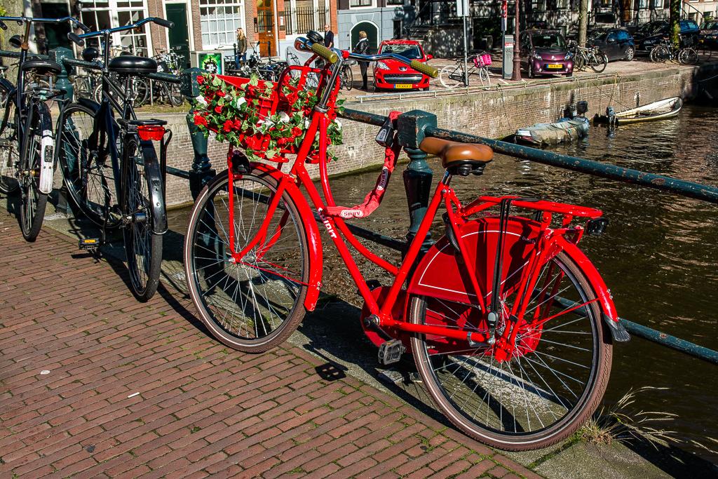 20150927-GCF15Eindhoven-DSC_5313