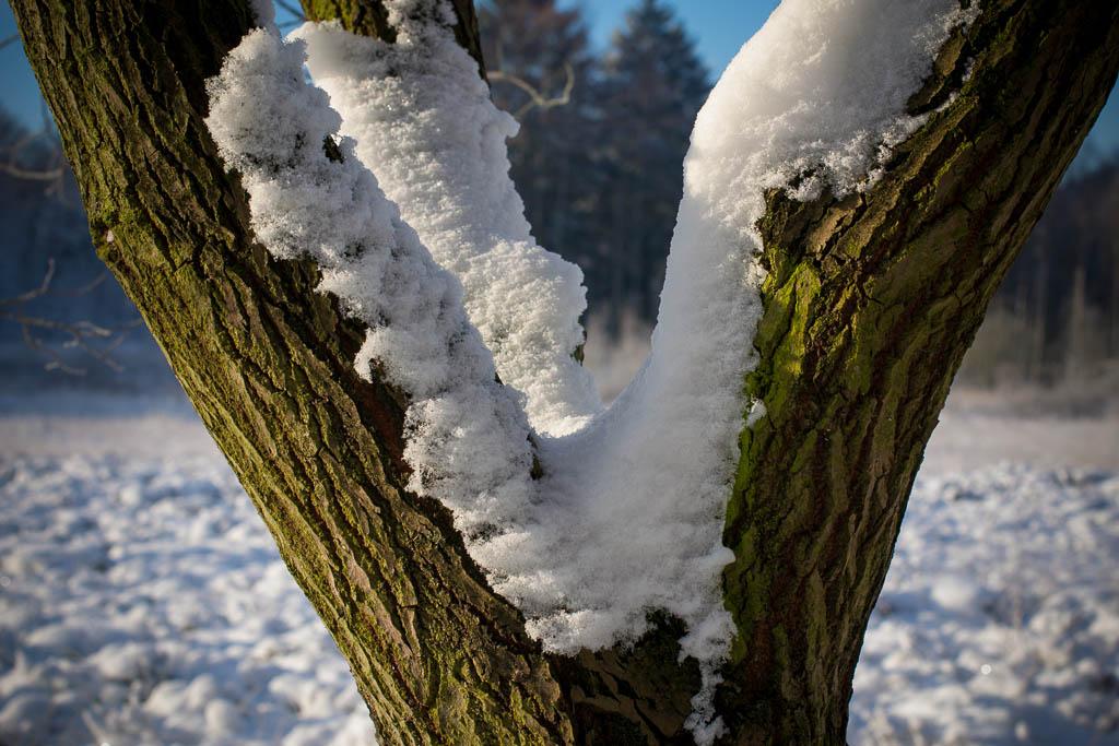 1. Schnee 2012