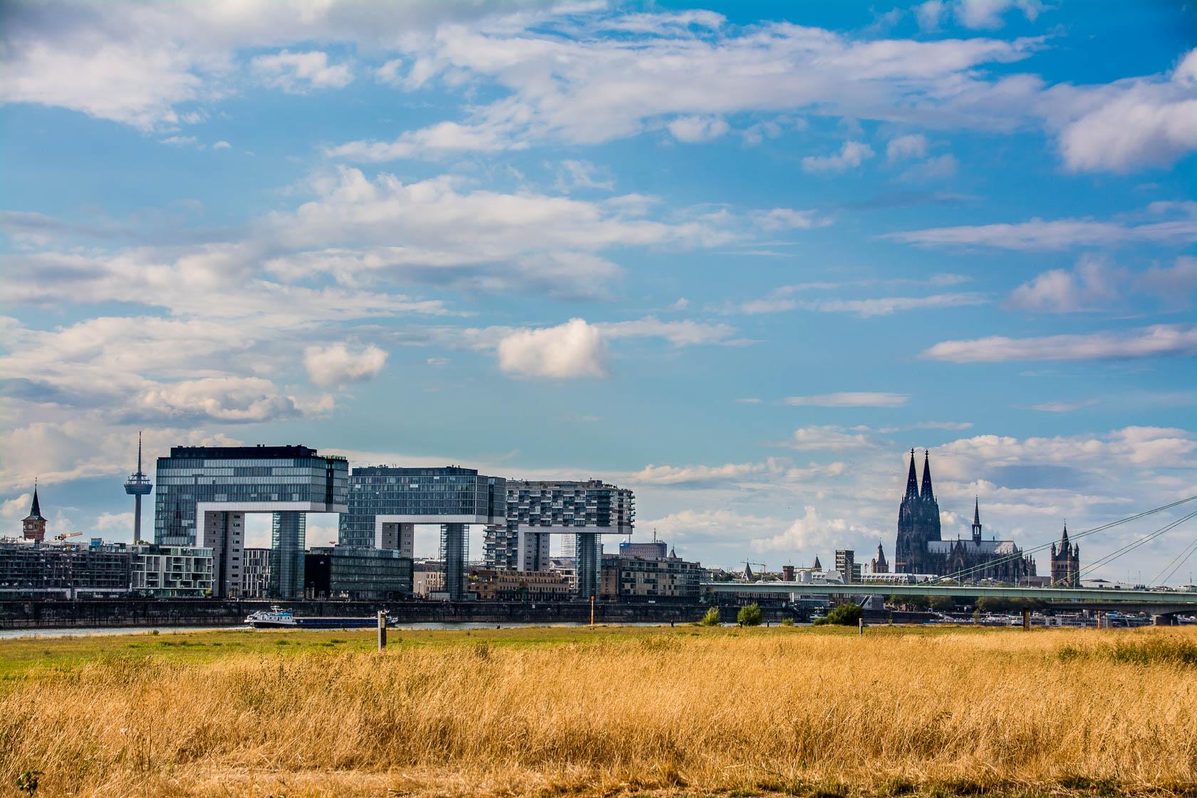 Ein Nachmittag am Rheinufer auf den Poller Wiesen in Köln